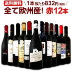 [クーポンで10%OFF]ワイン 【送料無料】第104弾!超特大感謝!≪スタッフ厳選≫の激得赤ワインセット 12本!