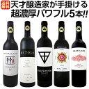 【送料無料】天才醸造家が手掛ける超濃厚パワフルかつ入手困難なワインばかり5本セット!