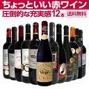 【送料無料】第21弾!当店オススメばかりを厳選したちょっといい赤ワイン12本セッ