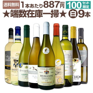 【送料無料★100セット限り】端数在庫一掃★白ワイン9本セット!!