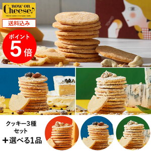 nowonCheeseアソートチーズクッキーセットTOPサムネイル