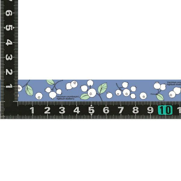 【プロペラスタジオ】マスキングテープ PMT-027【ブルーベリーブルー】 PMT-027 【あす楽対応】