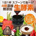 生酵素 ペースト酵素 幸寿(100g入/約1ヶ月分/ペースト...