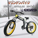 26インチ 電動自転車xマウンテンバイク ファットバイク 人