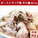 牛小腸【アメリカ産】約1kg/冷凍発送/もつ鍋、焼き肉、BBQ、ホルモン焼など/大特価/人気/