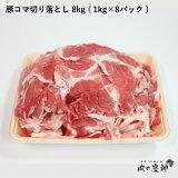 【期間限定10%OFF】ギフト 送料無料 肉 国産・九州産 豚コマ切り落とし 8k ( 1kg×8パック ) 豚小間 こま切れ 切落とし 冷凍 豚肉 北海道と沖縄を除き 送料無料