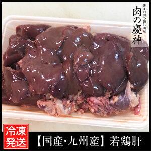【国産・九州産】 若鶏肝 8kg(500g×16パック) レバー