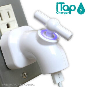 iTapUSB-AC充電アダプタ
