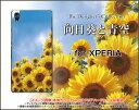 【メール便送料無料】XPERIA XZ1 [SO-01K/SOV36/701SO] XZ1 Compact [SO-02K] XZ Premium [SO-04J] XZs/XZエクスペリアハードケース/TPUソフトケース向日葵と青空[ 雑貨 メンズ レディース プレゼント 激安 特価 通販 ]
