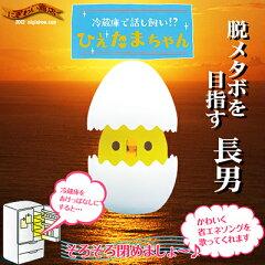 【販売中/送料350円】〔予約:2013年3月末頃発売予定〕 ひよこ が卵から『ぴよ?』★ ひえたま...