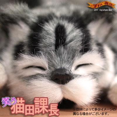 〔在庫アリ!〕【やばい!超カワイイ?!転がる猫のネコさん】笑う!猫田課長(グレー)