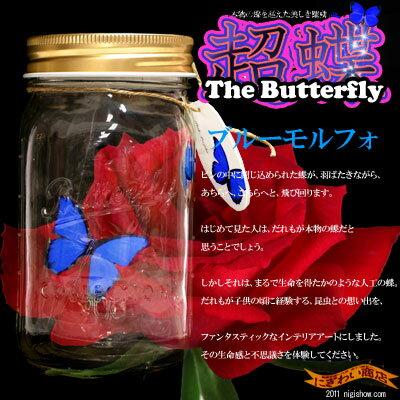 〔在庫アリ!〕凄すぎて笑っちゃう!本物の蝶を越えた美しき躍動★超蝶(ちょうちょう)-ブルーモルフォ-