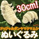 【販売中/送料無料】全長30センチの大きな大きなクマムシくん が ヌイグルミ になったよ 最強生...
