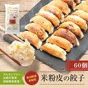 ご当地餃子!!米粉の皮で包んだギョーザ【肉なし】60個セット