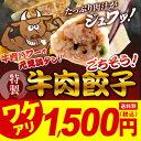 K159-1[訳あり]特別大特価! 早いもの勝ち!ごちそう♪牛肉餃子!!(賞味期限 2020/2/23)タレ 浜松・宇都宮に負けない味!