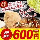 黄ニラ餃子餃子美味しいジューシーパリパリ黄ニラ