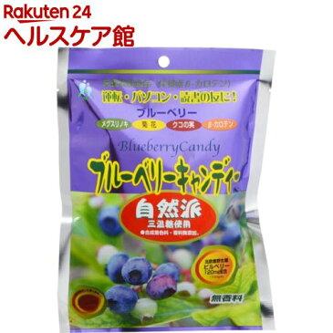 ブルーベリーキャンディー(80g)【パル】