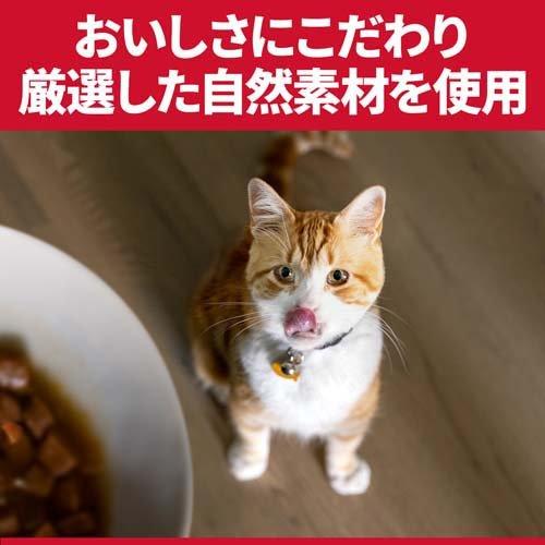 サイエンス・ダイエットインドアキャットアダルトチキン成猫用