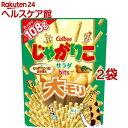 じゃがりこ サラダbits 大モリ(108g*2袋セット)【じゃがりこ】