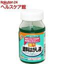 アサヒペン 強力塗料はがし液(100ml)【アサヒペン】