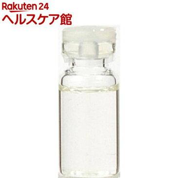 生活の木 ローズマリー・カンファー精油(50mL)【生活の木】【送料無料】