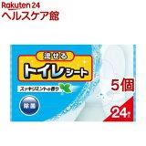 流せるトイレシート すっきりミントの香り(24枚入*5コセット)