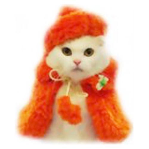 キャットプリン ふわふわ オレンジちゃん ベレー&コート(1枚入)