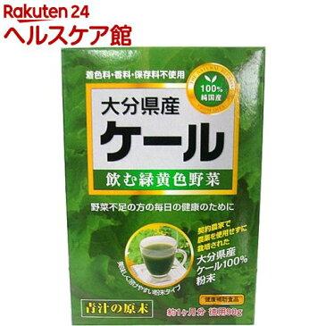 新日配薬品 大分県産ケール100%(90g)【新日配薬品】