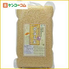 コジマフーズ 有機活性発芽玄米 徳用2kg[コジマフーズ 発芽玄米]【送料無料】