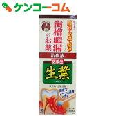 【第3類医薬品】生葉液薬 20g[生葉 口中薬/歯周病/液体]