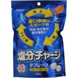 「カバヤ 塩分チャージタブレッツ グレープフルーツ味 90g」沖縄海水塩を50%使用した熱中対策...