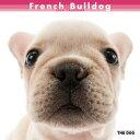 2014年度版 THE DOG カレンダー フレンチブルドック/THE DOG/ペットカレンダー/送料無料2014年...