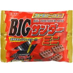 有楽 ビッグサンダーミニ 170g×12袋[有楽 チョコレート菓子]【あす楽対応】【送料無料】