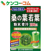 山本漢方 桑の葉若葉粉末青汁100% 100g[ケンコーコム 山本漢方の青汁 桑青汁]【あす楽対応】