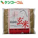 無洗米 卑弥呼の玄米 コシヒカリ 1kg