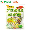 蜂の恵み プロポリスのど飴 100g【1_k】【rank】
