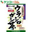 ウラジロガシ茶 100% 5g×20包[ケンコーコム ウラジロガシ茶(はいせき茶)]【1_k】