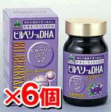 【/代引き無料】プレビジョン ビルベリー&DHA 120粒<6個セット>[健康補助食品][湧永製薬][ワクナガ][wakunaga][サプリメント] upup7
