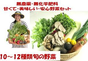 無農薬野菜 10〜12種類の旬の野菜セット!