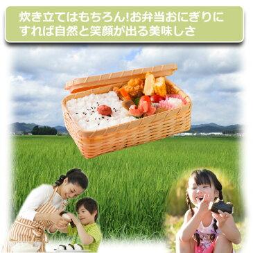 玄米 15kg 送料無料 コシヒカリ 農薬70%削減 30年産 丹波篠山産 減農薬 こしひかり 精米方法選べます