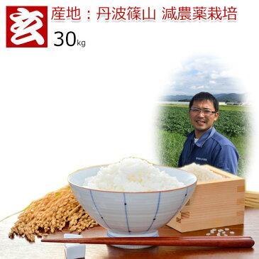 玄米 30kg 送料無料 コシヒカリ 農薬70%削減 30年産 丹波篠山産 減農薬 こしひかり 精米方法選べます