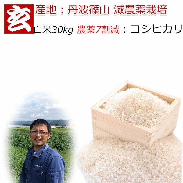 白米 30kg 送料無料 農薬7割減栽培 1等米 コシヒカリ 丹波 篠山産 減農薬米 産年:令和2年 生産者:田渕真也