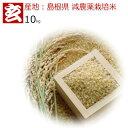 新米30年産 島根県 つや姫 減農薬 玄米 10kg 送料無料