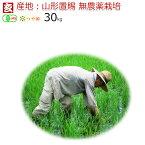 新米 無農薬 玄米 30kg 送料無料 JAS有機認証 1等米 無農薬つや姫 山形県産 置賜地区限定産年:令和2年 生産者:小林 亮