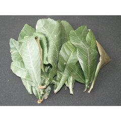 無農薬枇杷葉で手当てでは使えない乾燥しているもの、生葉・小さい葉など色々な葉を混ぜていま...