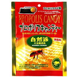 無添加で本来のおいしさが味わえる、安心安全な創健社の商品です。【特価】プロポリスキャンディー