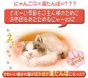 手作りのかわゆい猫のポカポカあったか湯たんぽ。かわいがってあげて下さい。◎【送料無料!】 ...