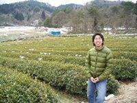 神農茶無肥料無農薬