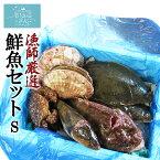 漁師さんの鮮魚セットS 【FishMarket38】 (2〜3kg目安) 気仙沼 唐桑 旬の鮮魚 お取り寄せ (復興デパートメント)