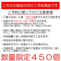 【2020福袋】(10)キーストン邪道エギングV1,V2セット